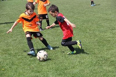 fotbal-2
